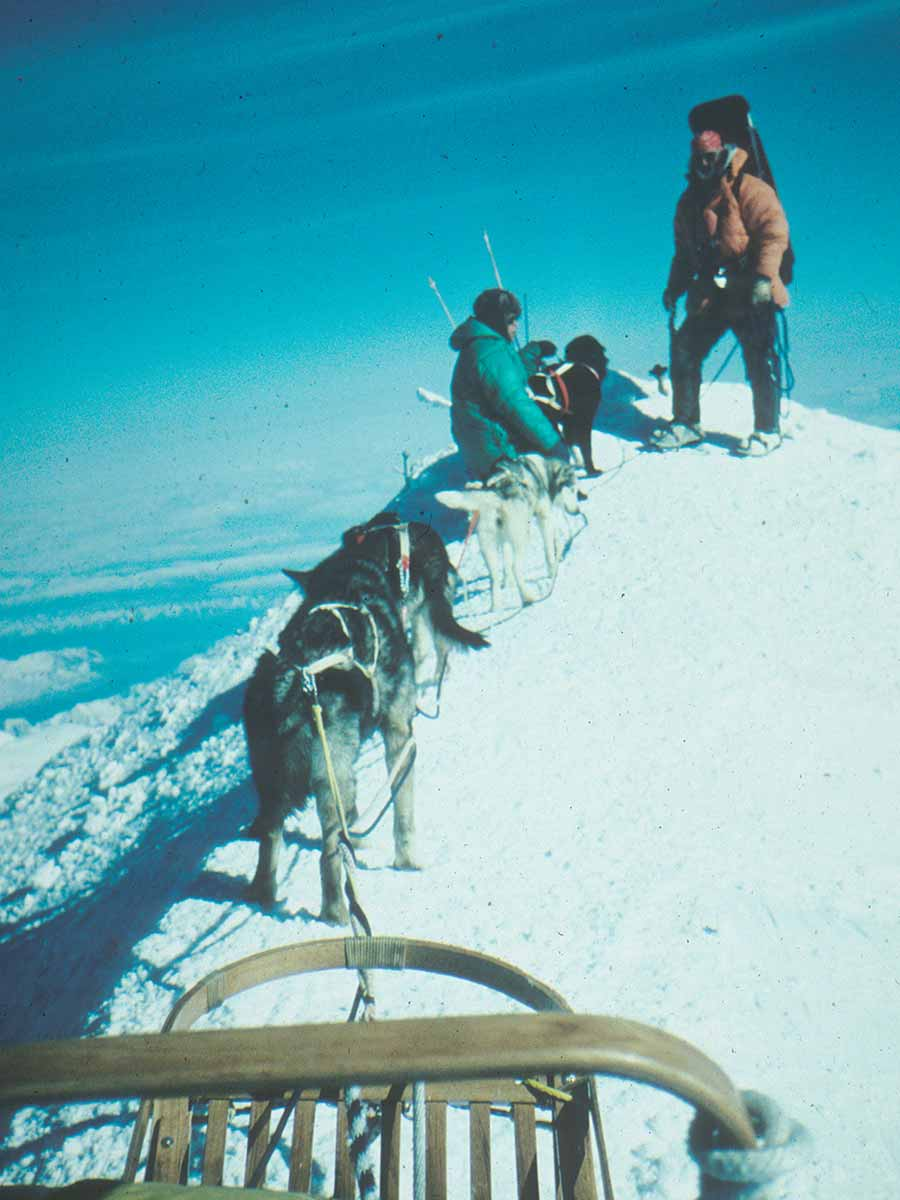 79 Denali Summit W Genet