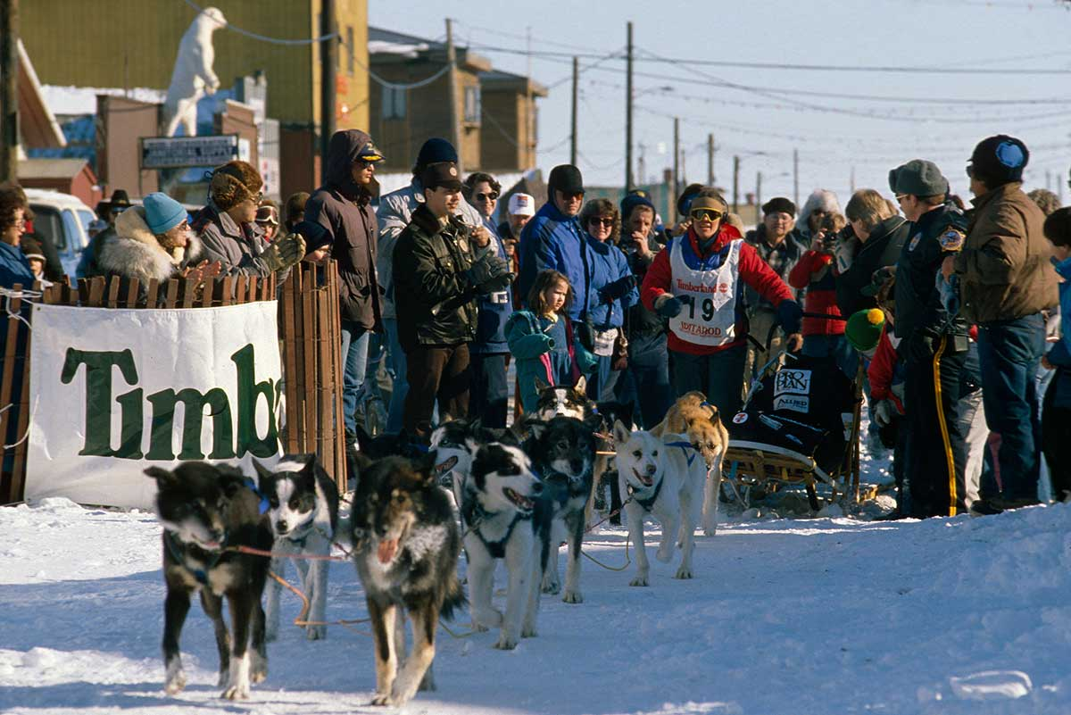 Iditarod Finish Chute
