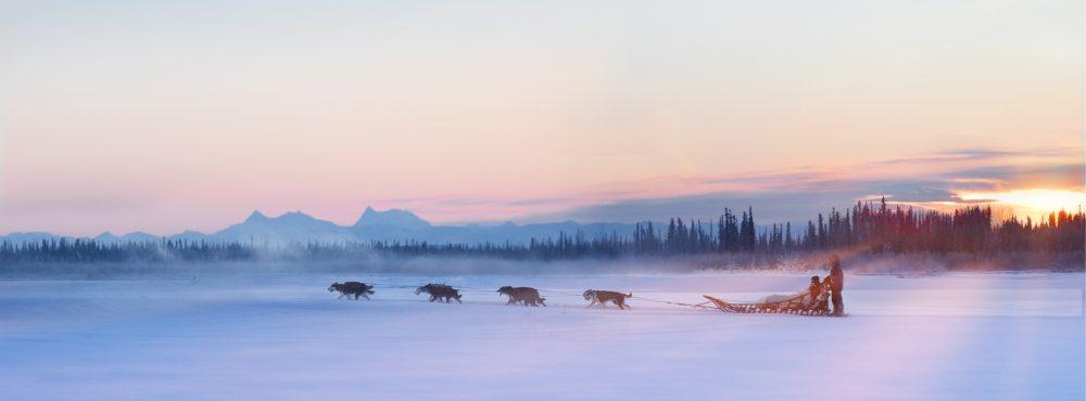 Winter Sled dog Ride Alaska