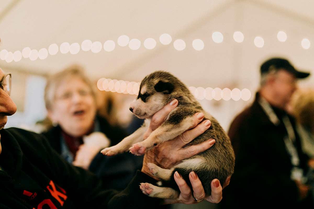 Holding Puppy